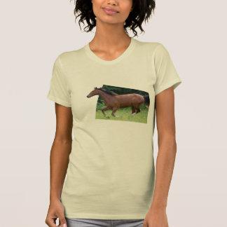 cavalo que galopa fora do tshirt do quadro da foto