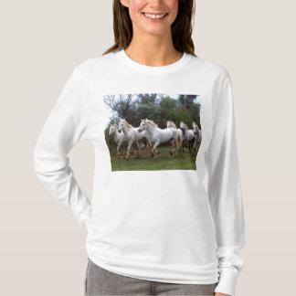 Cavalos selvagens brancos bonitos que funcionam o t-shirt