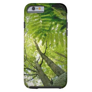 Cena da floresta no parque nacional do Acadia, Capa Tough Para iPhone 6