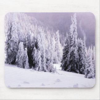 Cena da paisagem do inverno mouse pad