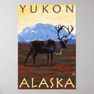 Cena do caribu - Yukon Alaska Pôsteres