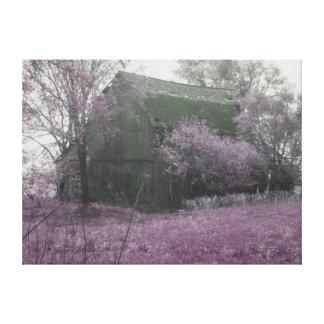 Cena preto e branco do celeiro com rosa impressão em canvas