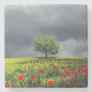 Cenário bonito da natureza da árvore do campo de porta copos de pedras