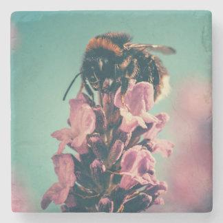 Cenário bonito da natureza da flor da abelha porta copos de pedras