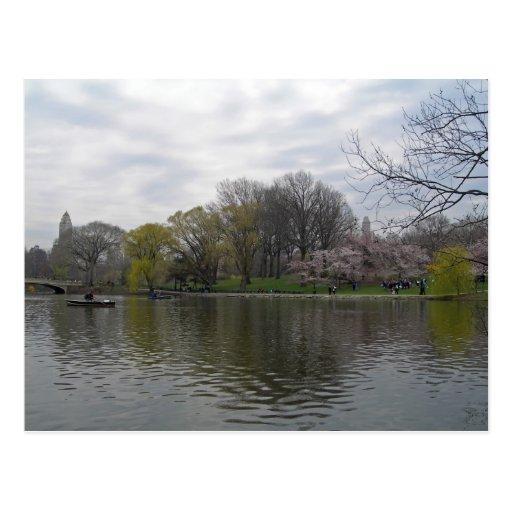 Central Park 001 Cartão Postal