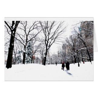 Central Park 2011 Cartão Comemorativo