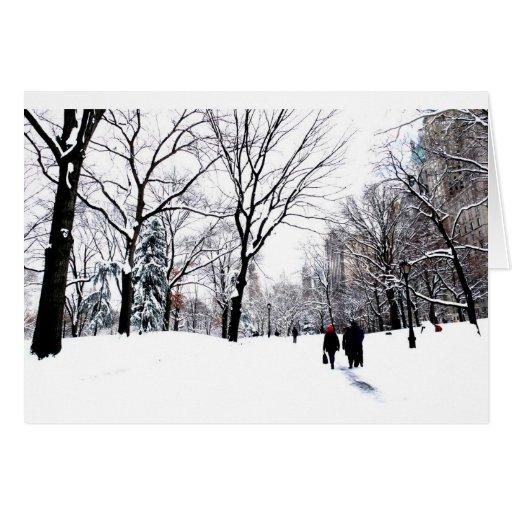 Central Park 2011 Cartões