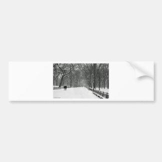 Central Park Adesivo Para Carro