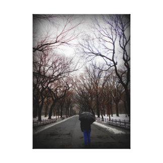 Central Park Impressão Em Tela