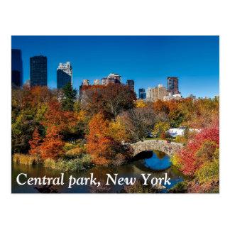 Central Park na folha New York do outono Cartão Postal