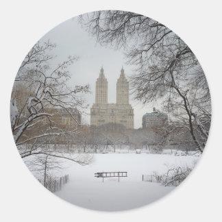 Central Park na neve, Nova Iorque Adesivo