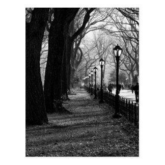 Central Park na Nova Iorque Cartão Postal