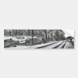 Central Park nevado Adesivo Para Carro