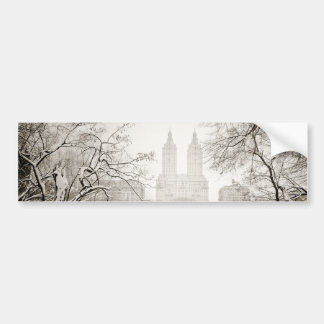 Central Park - neve bonita do inverno Adesivo Para Carro