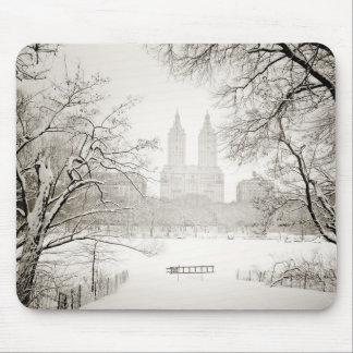 Central Park - neve bonita do inverno Mouse Pads