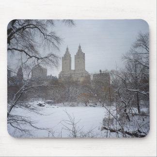 Central Park no inverno, através das árvores Mousepad