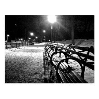 Central Park no inverno Cartão Postal