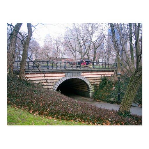 Central Park, Nova Iorque Cartoes Postais
