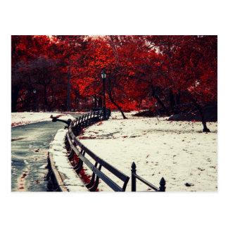 Central Park, NYC Cartão Postal