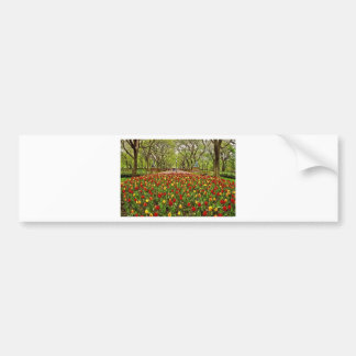 Central Park NYC das tulipas Adesivo Para Carro