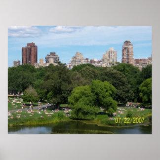 Central Park Pôster