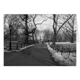 Central Park preto do branco NY Cartão Comemorativo