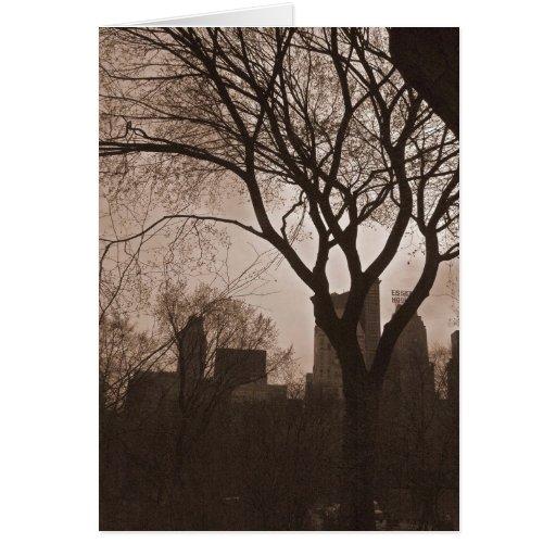 Central Park sul - NYC Cartoes
