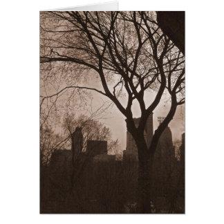 Central Park sul - NYC Cartão Comemorativo
