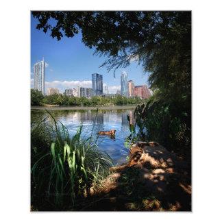 Centro Austin Texas do lago 2 ladybird da natação Impressão De Foto