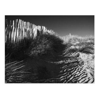 Cercando nas dunas, Bantham, Devon Cartão Postal