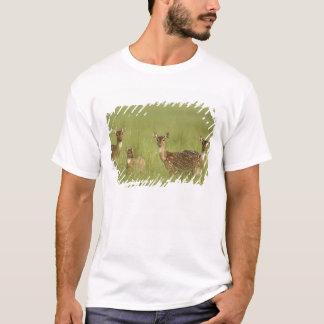 Cervos de Chital e novo, nacional de Corbett T-shirt