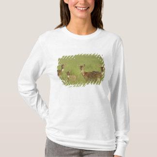Cervos de Chital e novo, nacional de Corbett T-shirts