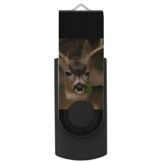 cervos pen drive giratório