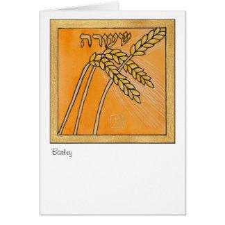 Cevada, uma das sete espécies de Israel Cartão