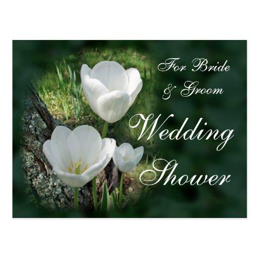 Chá de casamento branco das tulipas cartoes postais