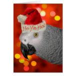 Chapéu do papai noel do cartão de Natal do papagai