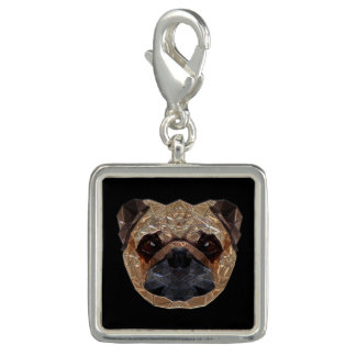 Charms Com Fotos Pug_20170601_by_JAMColors