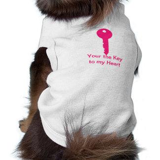 Chave cor-de-rosa roupa para pets