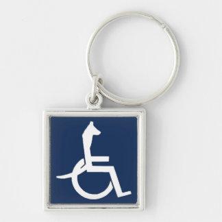 Chaveiro da cadeira de rodas de Rex