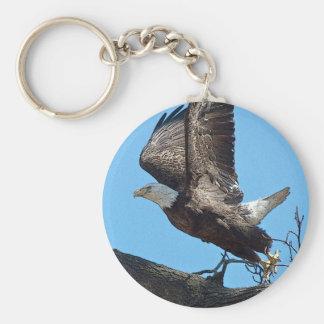 Chaveiro Descolagem da águia americana