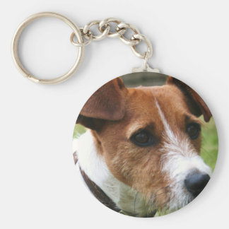 Chaveiro Jack Russell Terrier