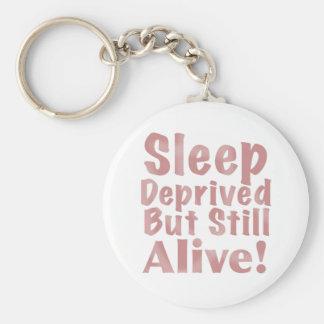 Chaveiro O sono destituído mas ainda vivo em empoeirado