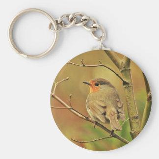 Chaveiro Pássaro do pisco de peito vermelho