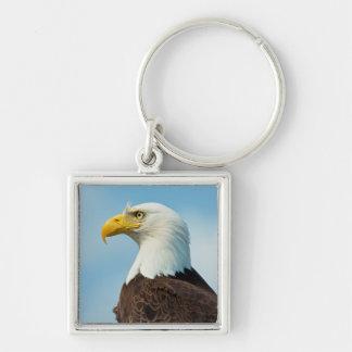 Chaveiro Perfil de uma águia americana