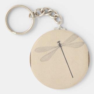 Chaveiro Uma libélula, por Nicolaas Struyk, cedo 18o C.