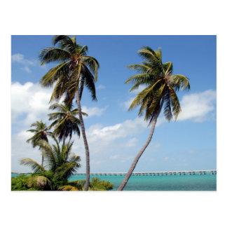 Chaves de Florida do parque estadual de Baía Honda Cartão Postal