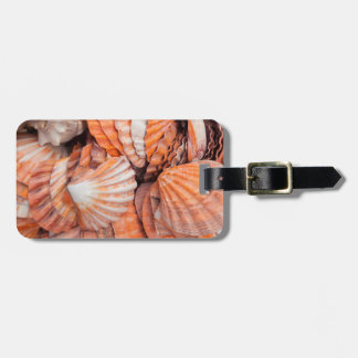 Chaves de Florida, Key West, seashells Etiqueta De Malas