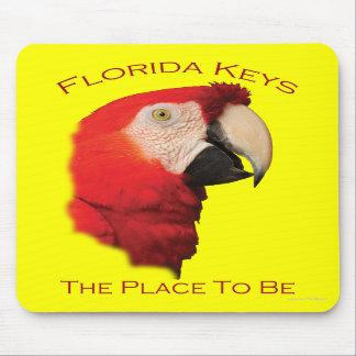 Chaves de Florida Mousepads
