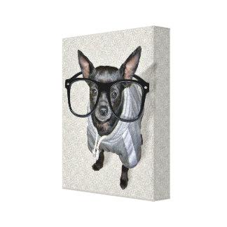 Chihuahua preta com foto dos vidros impressão de canvas esticadas