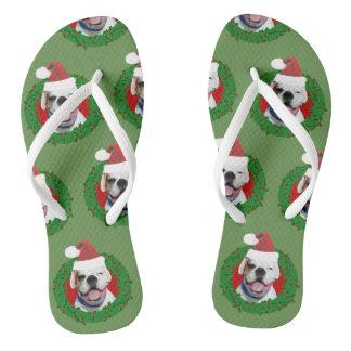 Chinelos brancos do cão do pugilista do Natal